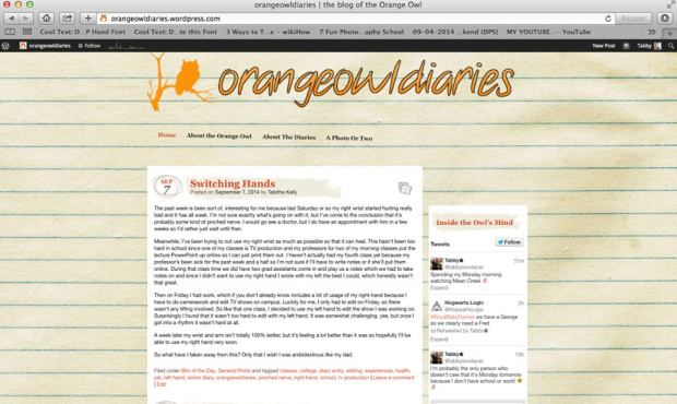orangeowldiaries 2014