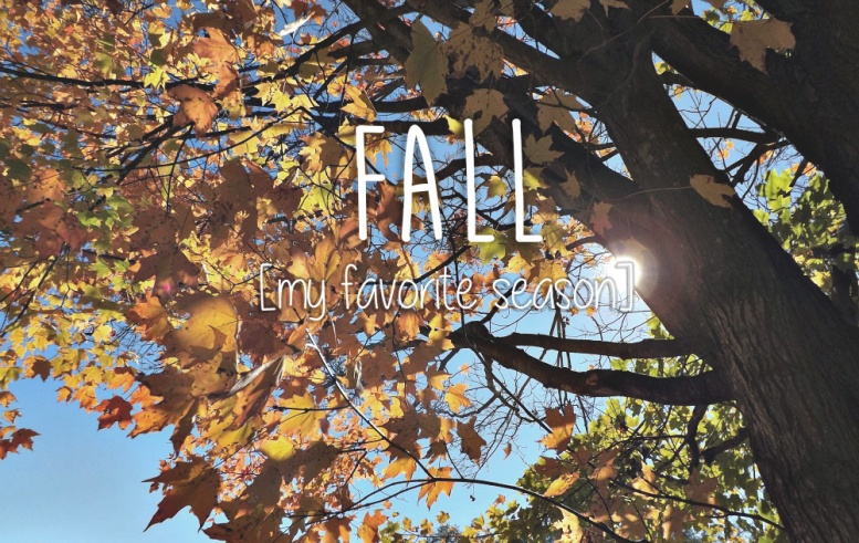 fall my favorite season