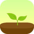 forest app icon