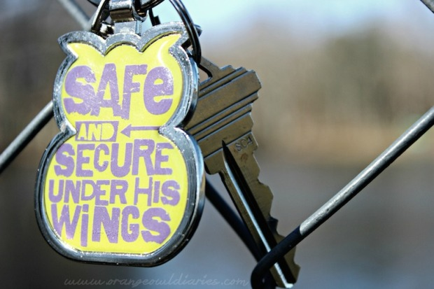 Safe under His wings